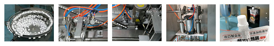 360 view ZLD-A spout pouch filling and capping machine